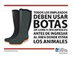 Use botas